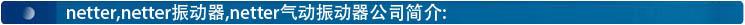 netter公司简介